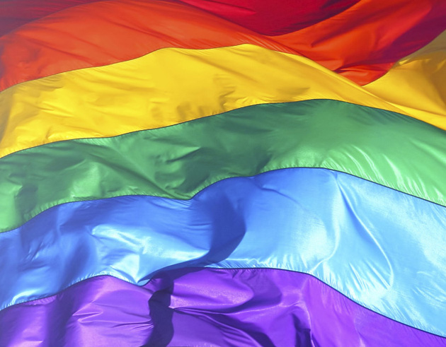 Gay flag meaning